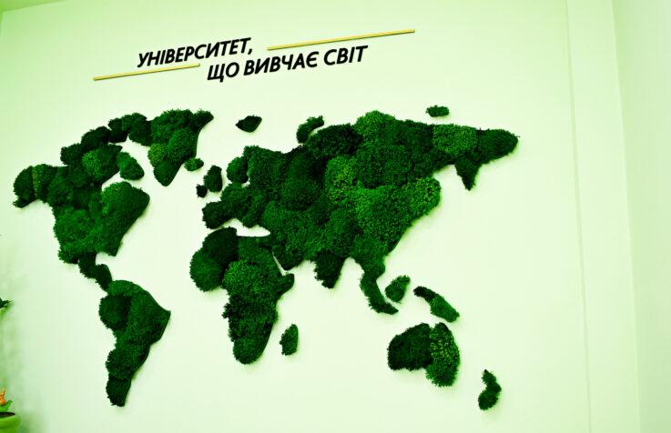Карта из стабилизированного мха