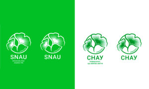 Лого СНАУ